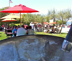 Steel Jam Performing for Picnickers at Viansa Winery